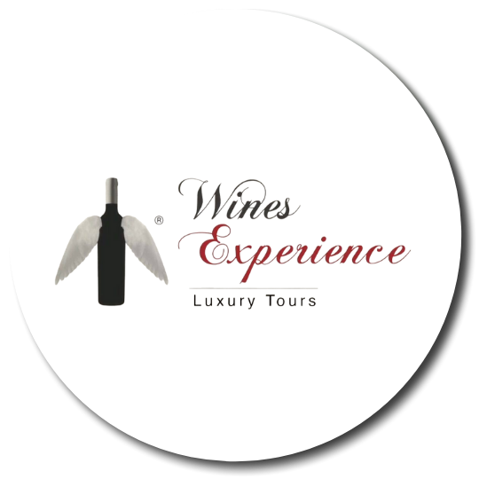 Wines Experience